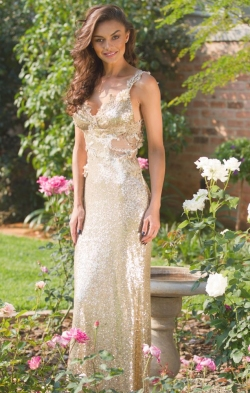 gold sequin fitted dress.