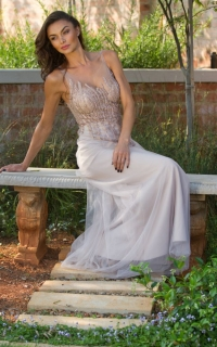 27 line beaded bodice with mesh skirt