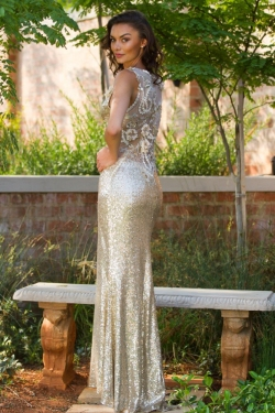 gold sequin dress with back lace detail