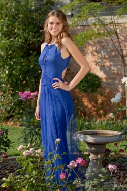 royal blue fitted dress with lace detail