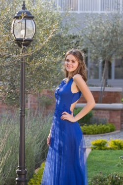 royal blue fitted dress with mesh overskirt