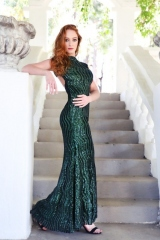 101-new-romantics-evening-matric-dance-dress-hire-Bottle-green-sequin-dress