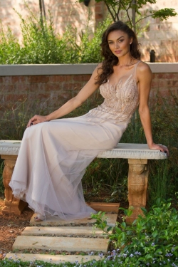 line beaded bodice with nude skirt