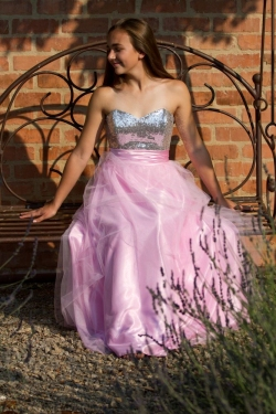 baby pink skirt with slver bodice